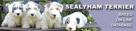 Sealyham terrier. Breed on-line database.